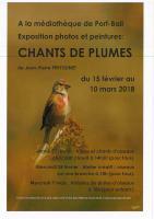 EXPOSITION PHOTOS OISEAUX
