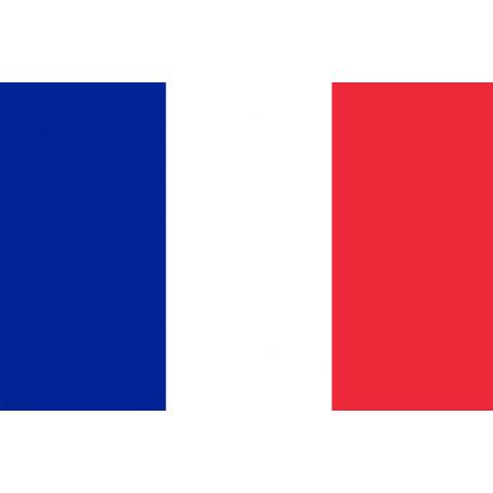 Cérémonies de la Libération